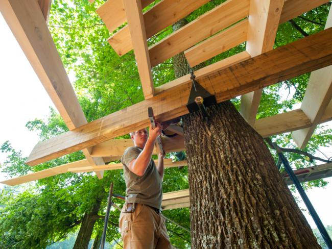 Sustainable Treehouse Design And Construction